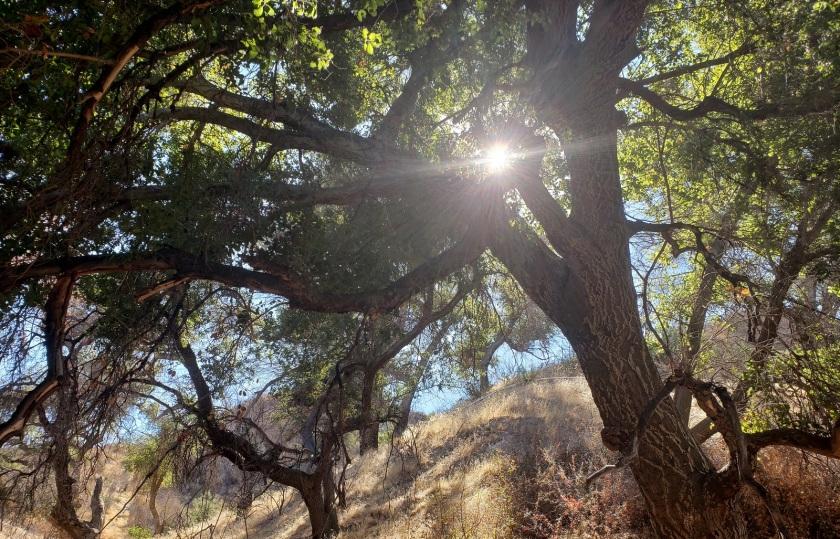 Rivendale Open Space, Santa Clarita, CA
