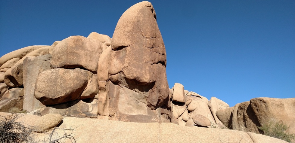 Face Rock, Joshua Tree National Park