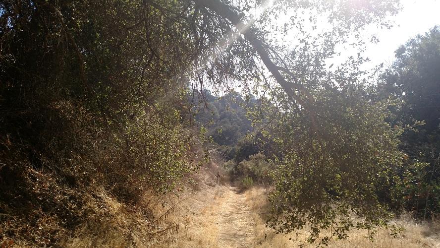 Suicide Trail, Griffith Park, CA