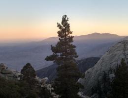 Desert View Trail, Mt. San Jacinto State Park