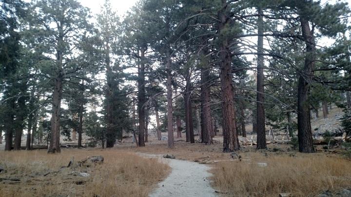 Desert View Trail, Palm Springs, CA