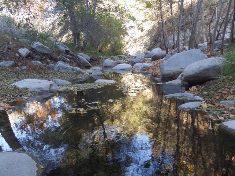 Bear Creek, San Gabriel Wilderness