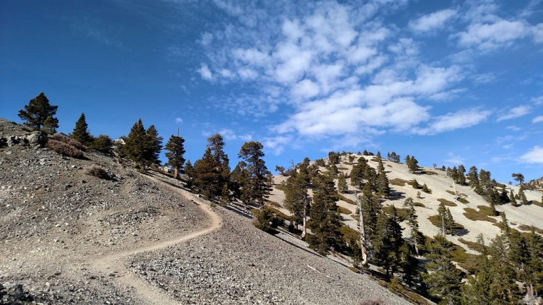 Old Mt. Baldy Trail