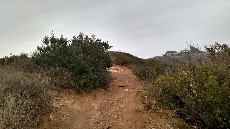 Pirate Trail, Forrestal Reserve, Palos Verdes Peninsula, CA