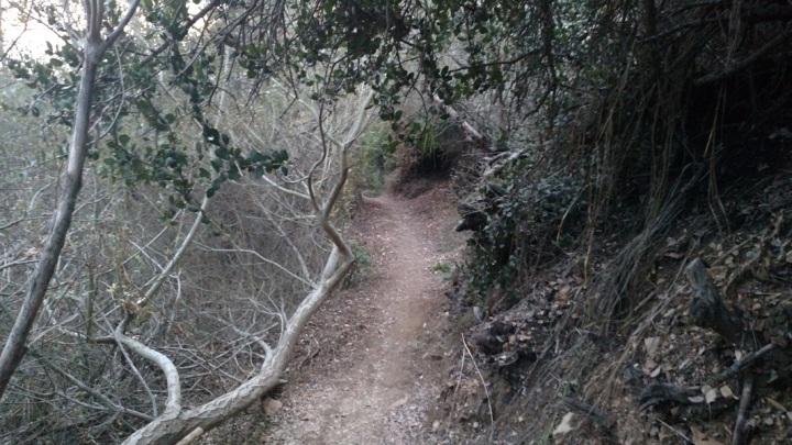 Mariposa Trail, Forrestal Reserve, Palos Verdes Peninsula, CA
