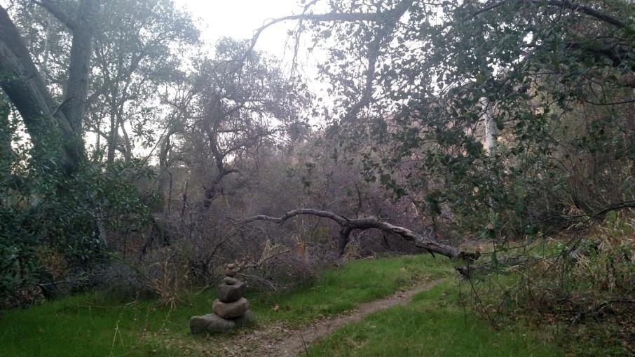 Topanga State Park, CA