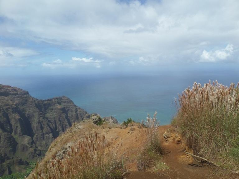 Awa Awapuhi Trail, Kauai, Hawaii