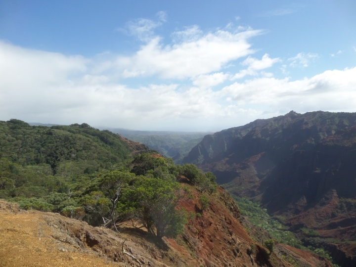 Cliff Trail Lookout, Koke'e State Park, Hawaii
