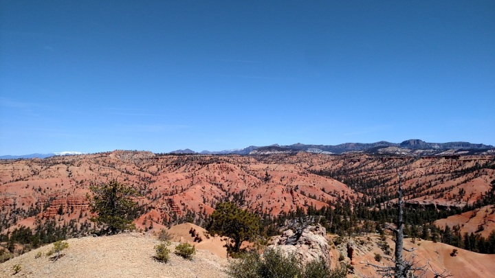 Buckhorn Point, Dixie National Forest