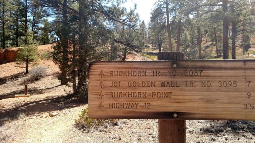 Buckhorn Trail, Red Canyon, Utah