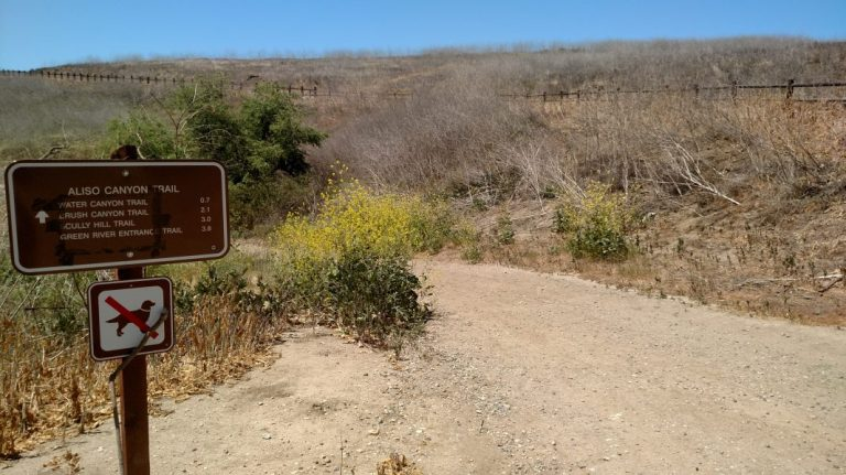Aliso Canyon, Chino Hills State Park