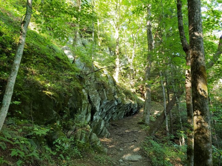 Gabes Mountain Trail, Great Smoky Mountains National Park
