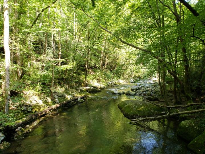 Big Creek, Great Smoky Mountains National Park