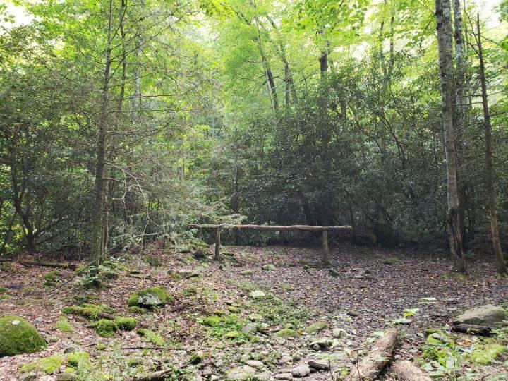 Big Creek Trail, Great Smoky Mountains