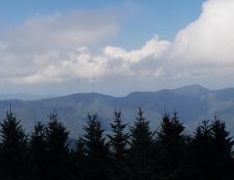 Mt Mitchell North Carolina