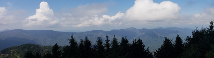 Mt Mitchell North Carolina