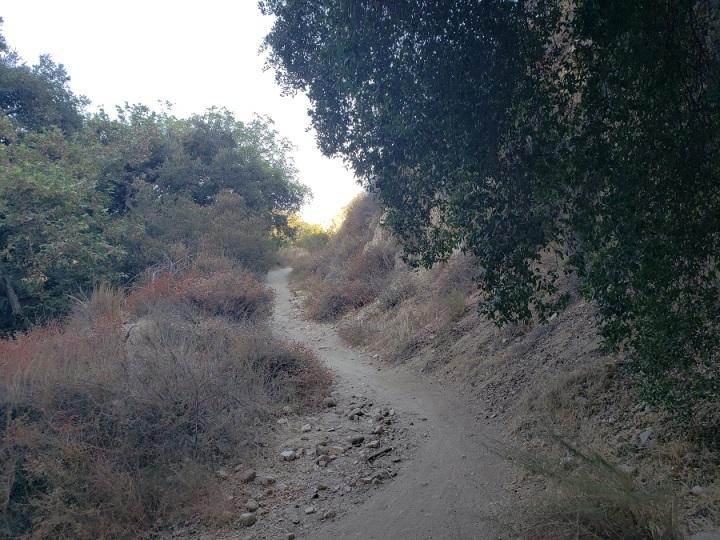 Fern Truck Trail, Altadena, CA