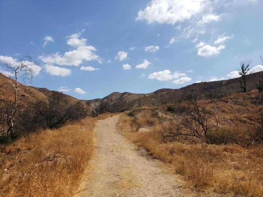 Shadow Hills, Sunland, CA