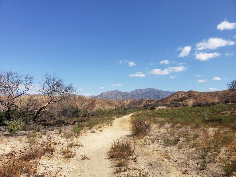 Shadow Hills, Los Angeles, CA