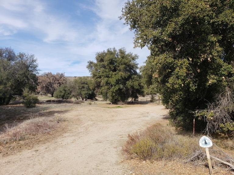 Eagle Rock hike, Warner Springs, CA